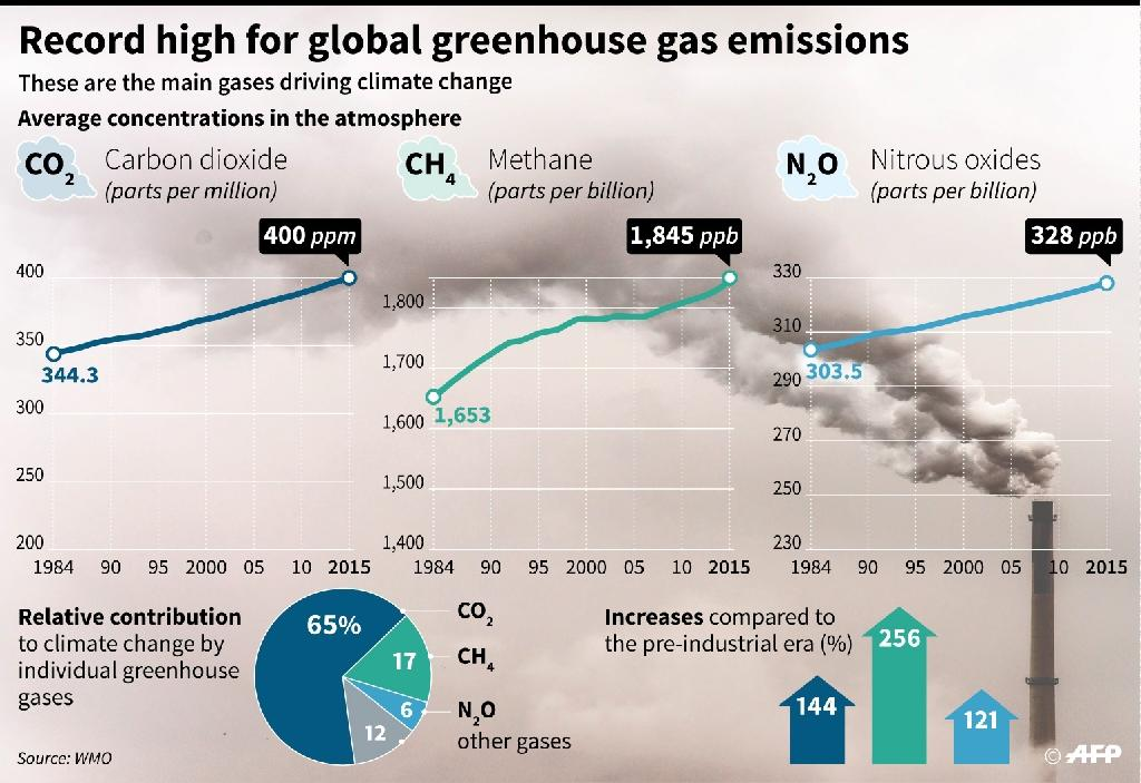 Record high for global greenhouse gas emissions (AFP Photo/)