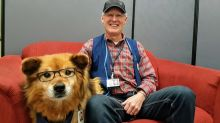 Rusty, Winnipeg's glasses-wearing hospital therapy dog, to be honoured with ceremony