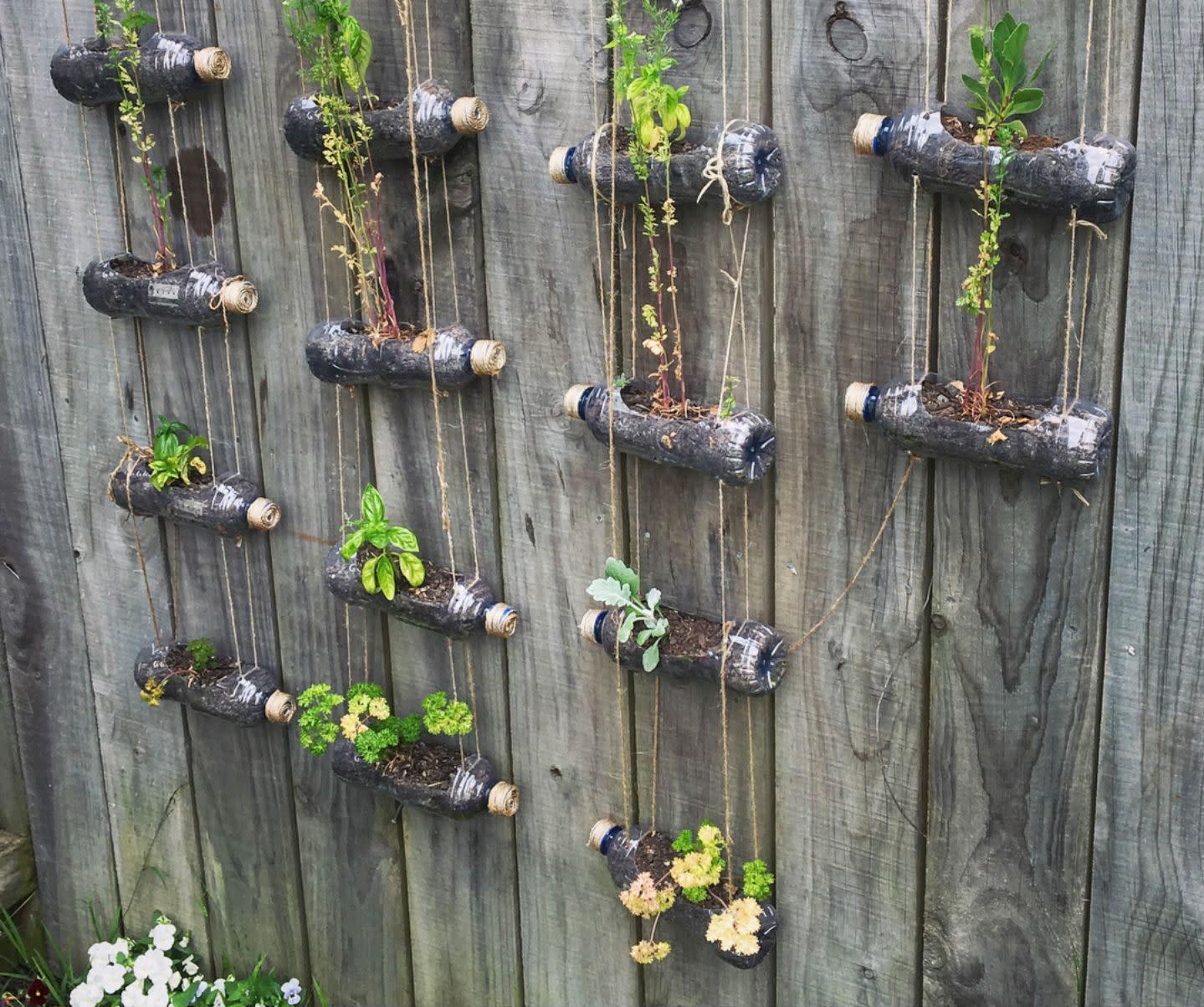 Ideas originales para crear un jard n vertical - Ideas originales jardin ...