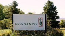 Andhra Pradesh revokes order to check planting of Monsanto GM cotton