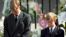 Príncipes William y Harry hablan de la caminata tras ataúd de Lady Di