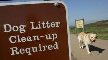 Snapcrap app steps in to take on public poop