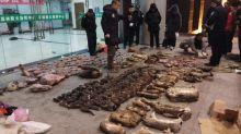 Severely investigate, punish violators, says Chinese authorities on wildlife trade ban