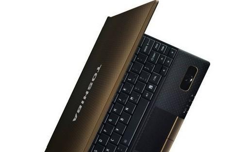 Toshiba NB550D with AMD Ontario denied entry to the US