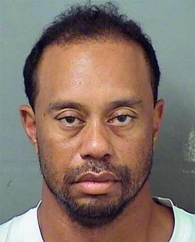 The Tiger Woods mug shot.