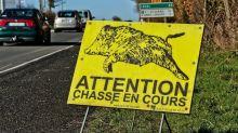 Le gouvernement prévoit-il vraiment d'ouvrir la saison de chasse dès le mois de juin ?