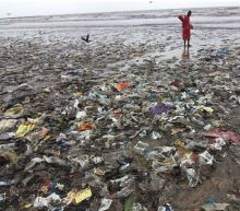 Plastic pollution: take-out food is littering the oceans