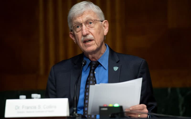 NIH Director Collins optimistic on COVID-19 vaccine by year end