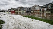 One year later, residents say northeast Calgary still hasn't recovered from devastating hailstorm