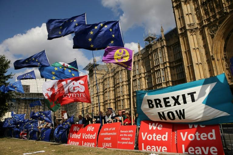 Flags flutter as activists gather near the Houses of Parliament in central London on September 4, 2019 to demonstrate for and against Brexit (AFP Photo/ISABEL INFANTES)