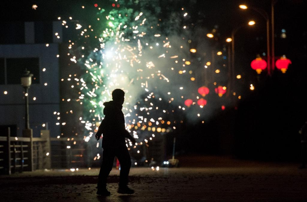 A man sets off fireworks to celebrate the Lunar New Year of the Monkey (AFP Photo/Johannes Eisele)