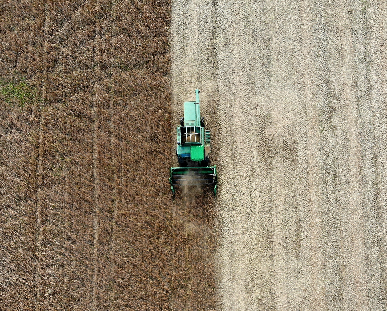 Farm bill passes despite President Trump's food stamp preference