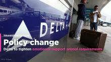Delta Air to tighten rules for onboard service animals