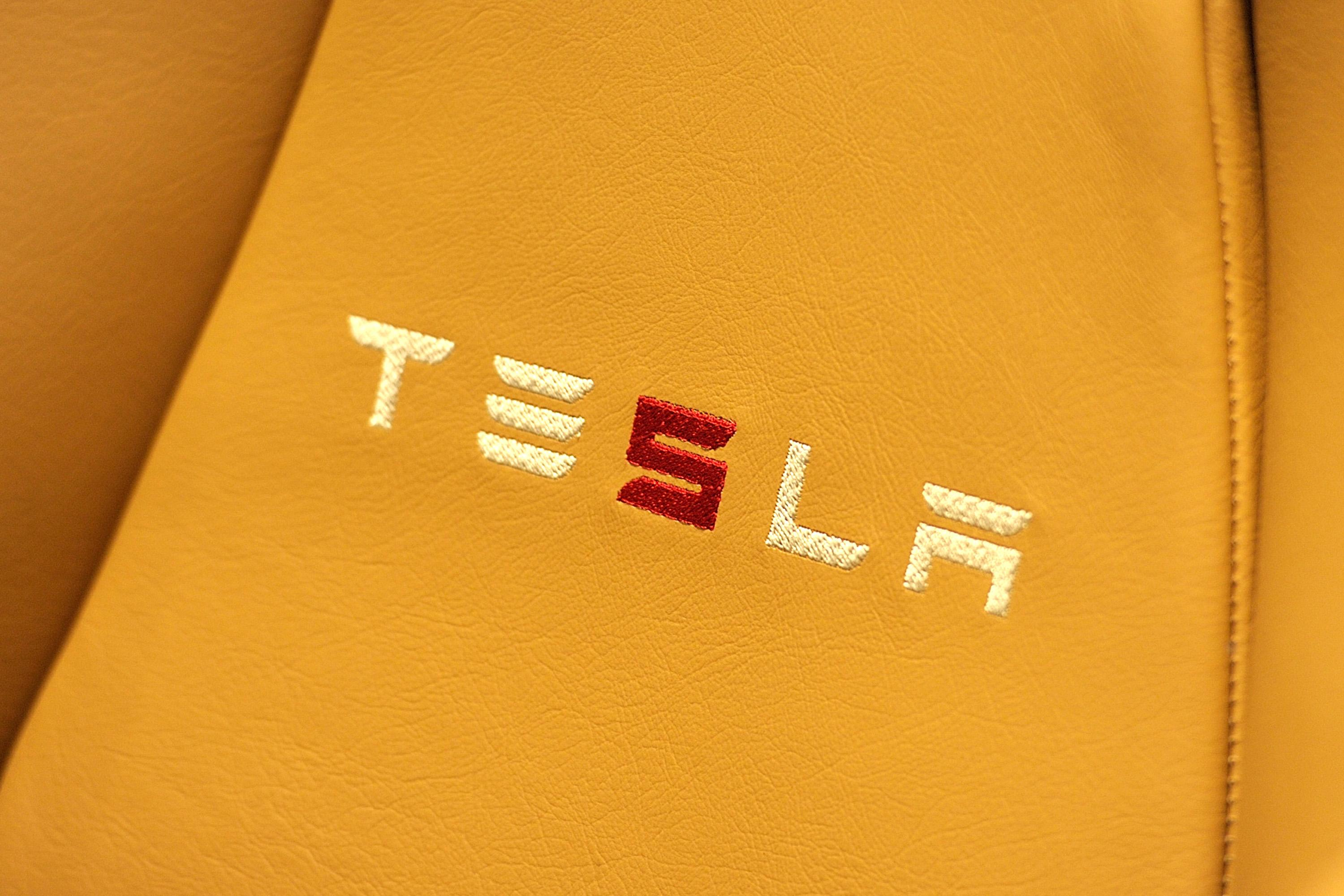 Will Tesla stock plunge to $125 a share?