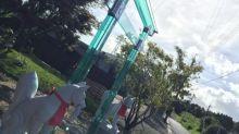 近未來感覺 日本鹿屋市玻璃鳥居