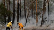 Soaring temps to increase NSW fire danger