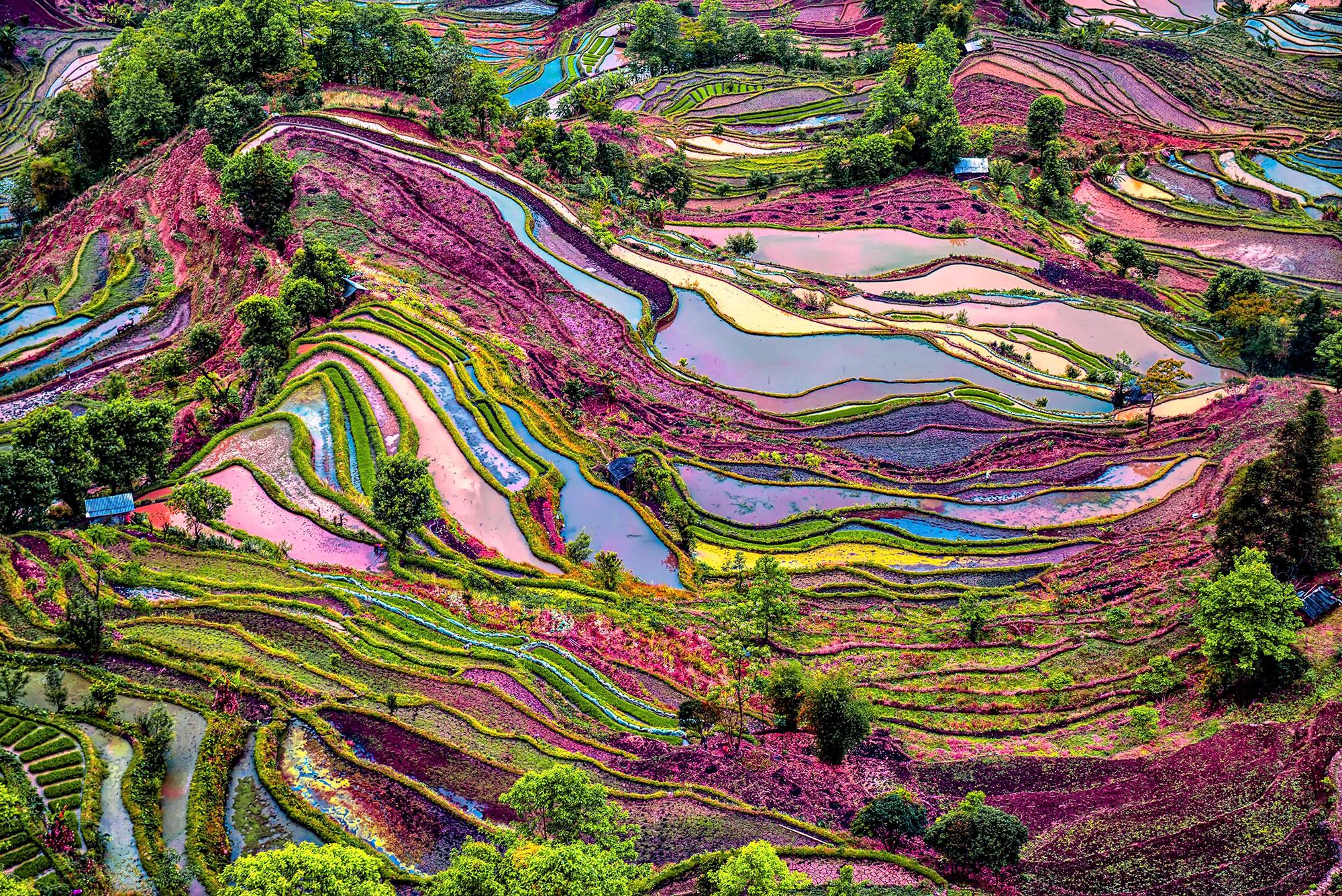 China s rice terraces the most beautiful in the world for What are terraces