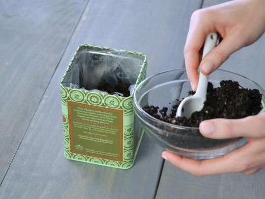 <p>Add a couple of small scoops of potting soil on top of the foam balls. Now is the time to add your herb. Be sure to loosen the roots and add a bit of potting soil on top.</p>