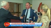 Leadership spill fears