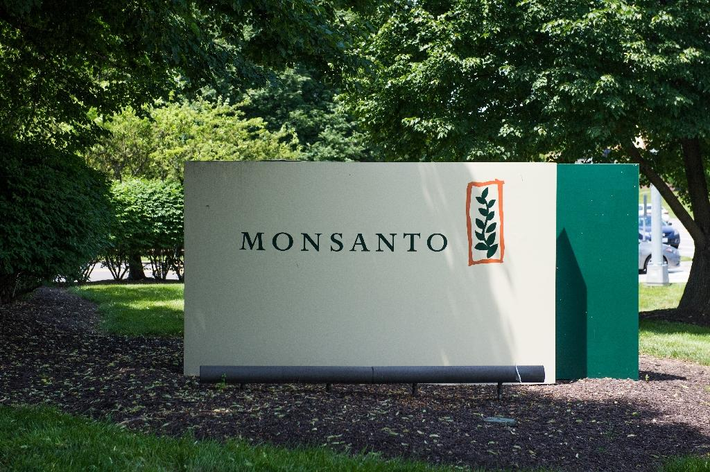 Monsanto was fined $290 million in August for not warning a groundskeeper that its weed killer product Roundup might cause cancer (AFP Photo/Michael B. Thomas)