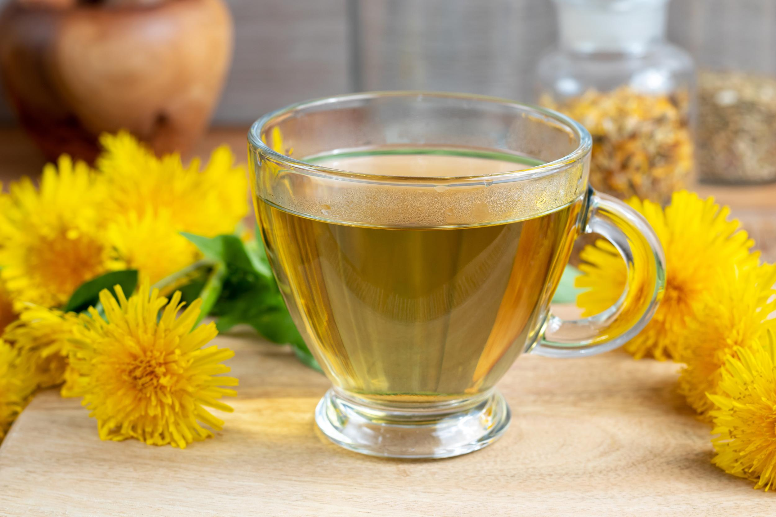 A cup of dandelion tea with fresh flowers and leaves