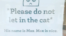 The internet is going crazy over this library's sign about a cat named Max