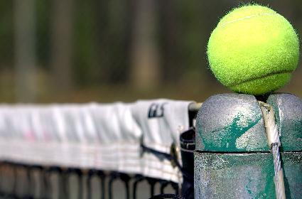 GC 2008: EA looking to start up tennis franchise on Wii