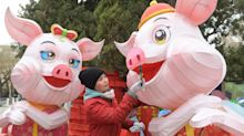 Chinese New Year 2019: Pigs, luck and why you should avoid medicine, laundry and crying children