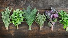 10 herbs that can reduce anxiety and boost your health