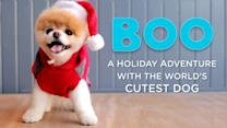 Boo The World's Cutest Dog Meets Santa in New Video
