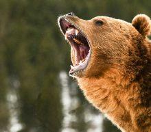 Dow Jones Futures: Market Rally Breaks Support As Treasury Yields Soar; Nvidia, Teladoc, Tesla Flash Sell Signals