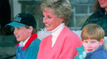 Harry and William reveal regret at not seeing mother Diana in her final days