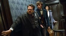 Fantastic Beasts earns $500 million worldwide