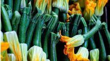 Cultive e coma: deixe a comida colorida com flores comestíveis