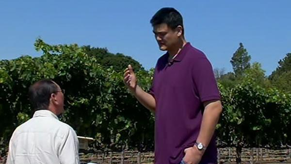 Yao Ming bring Napa to China with popular wine label