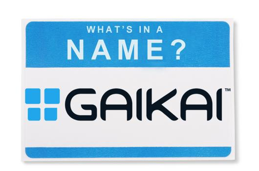 What's in a Name: Gaikai