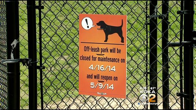 Mt. Washington Dog Park Has Neighbors Snarling At Each Other