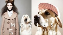 #POPBEE 專題:狗狗是你最佳老友嗎?自問愛狗的你,絕不可以不看這 5 部以牠們作題材的電影!