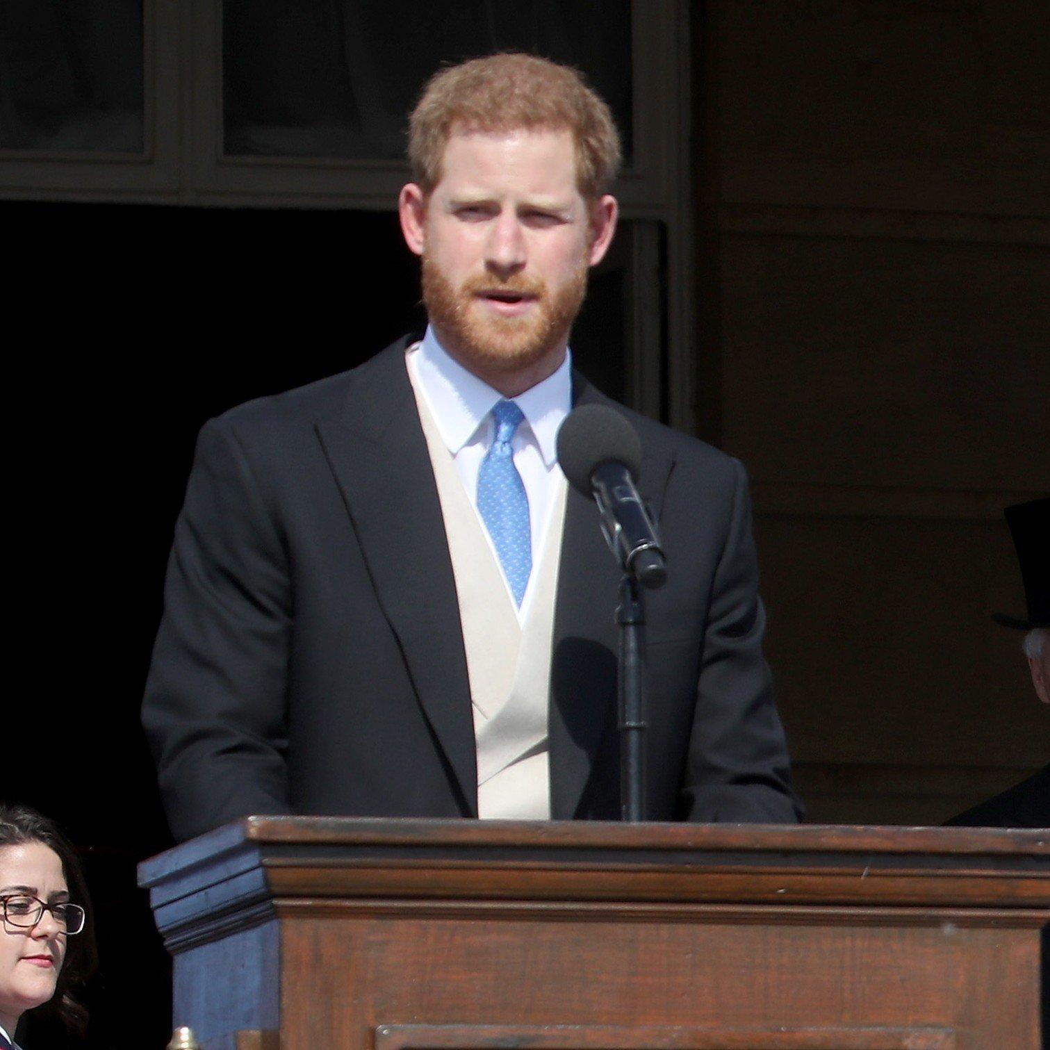 LOL! Prince Harry Gets Attacked By A Bumblebee At Prince