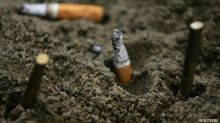 Cigarette Butts Significantly Damage Plant Growth: Research