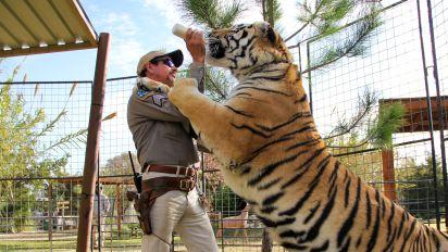 'Tiger King' developments since its Netflix debut