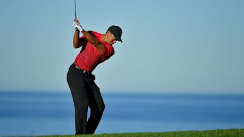 Golf insiders predict big year for Tiger