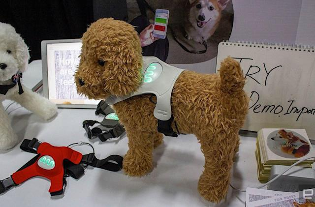 This wearable for dogs claims to reveal their mood