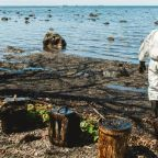 Explainer: Who pays for Mauritius oil spill and how much?