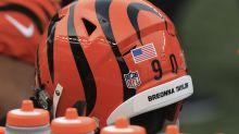 See it: Bengals fans mock up some amazing alternate-helmet designs after rule change