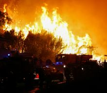 France appeals for help in fighting Cote d'Azur fires