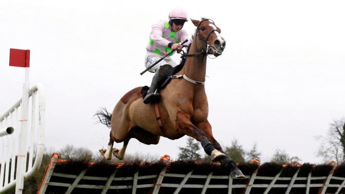 Faugheen's long-awaited return in Punchestown win cheered all the way over in Cheltenham