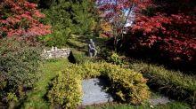 Des habitants de Dublin souhaitent ramener les restes de James Joyce, enterré en Suisse, en Irlande