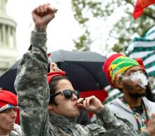 Up in Smoke: Marijuana activists cuffed after lighting up at U.S. Capitol