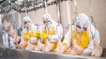 Tyson Begins $48 Million Poultry Production Expansion as Chicken Demand Soars